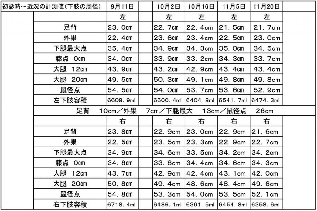 図2. 下肢周囲径 計測表